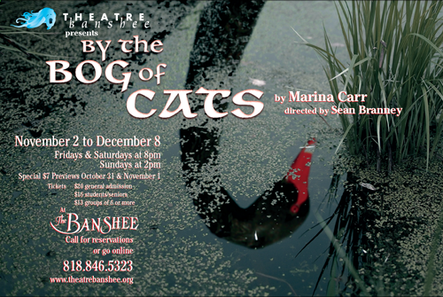 """By the Bog of Cats"" at Theatre Banshee"